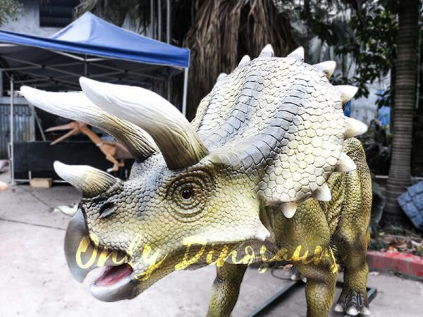 Jurassic Park Animatronics Triceratops for sale1