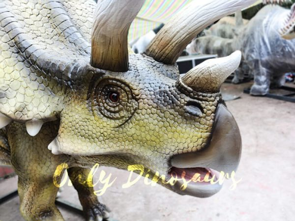 Jurassic Park Animatronics Triceratops for sale7