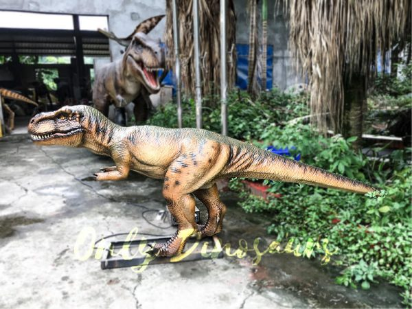 Jurassic Park T rex Animatronic Prop for Vistitor4