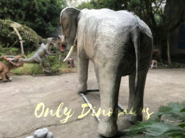 Juvenile-Animatronic-Elephant-Realistic-Model5