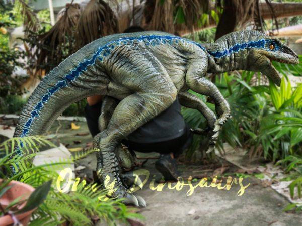 Juvenile-Blue-Raptor-Shoulder-Puppet-Realistic-Dinosaur