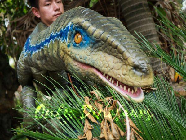 Juvenile-Blue-Raptor-Shoulder-Puppet-Realistic-Dinosaur2-1