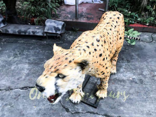 Life size Animatronic Creatures Leopard1