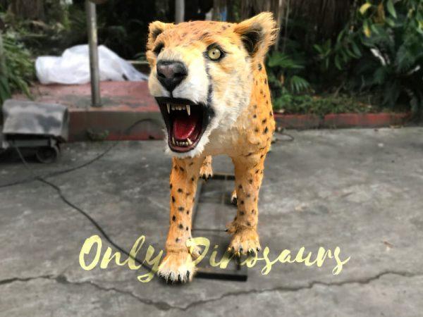Life-size-Animatronic-Creatures-Leopard6