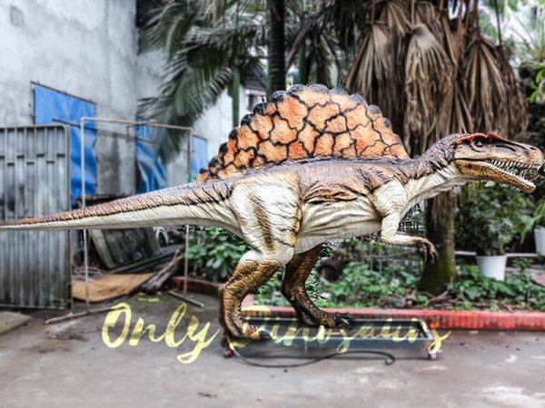Lifelike Animatronic Dinosaur Spinosaurus for sale1