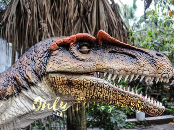 Lifelike Animatronic Dinosaur Spinosaurus for sale3