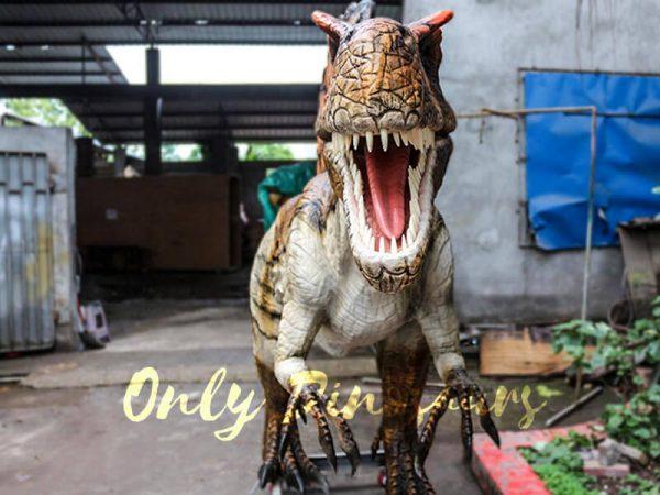 Lifelike Animatronic Dinosaur Spinosaurus for sale4