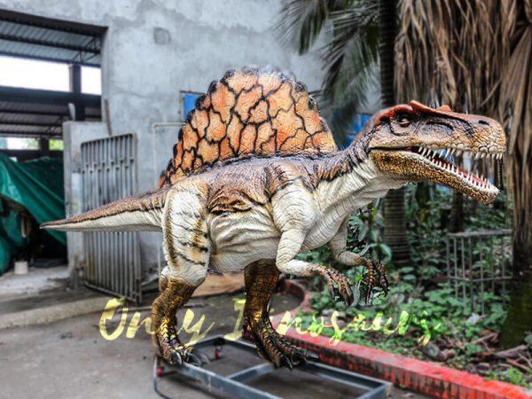 Lifelike Animatronic Dinosaur Spinosaurus for sale6
