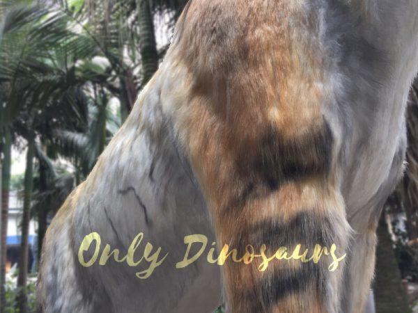 Lifelike-Extinct-Chalicotherium-animatronics-for-sale6