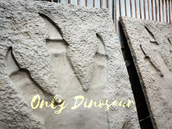 Lifesize Tyrannosaurus Dinosaur Footprint Fossil for sale2