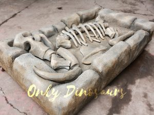 Mammoth Fossil Replica Dig for Kids