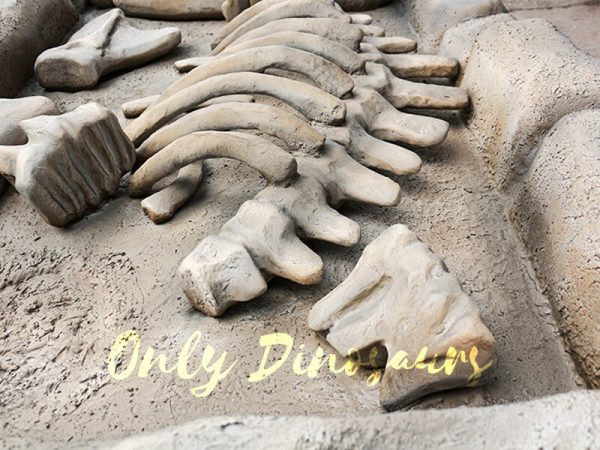 Mammoth Fossil Replica Dig for Kids3