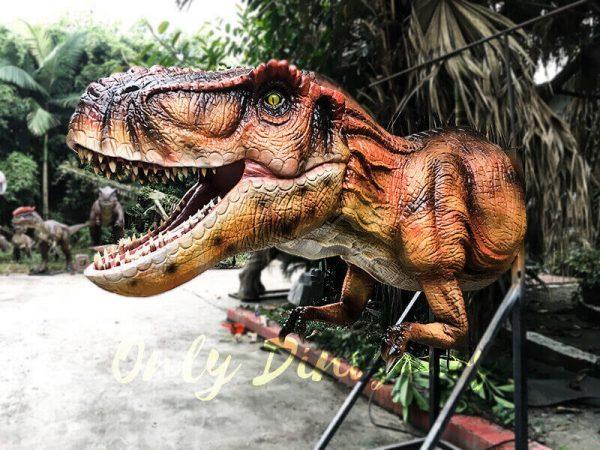 Mechanical T rex Head Decoration for Restaurant4