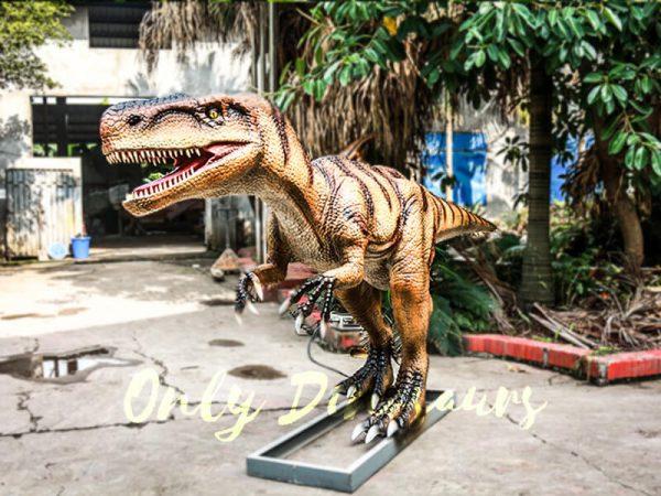 Museum Center Exhibition Animatronic Monolophosaurus5