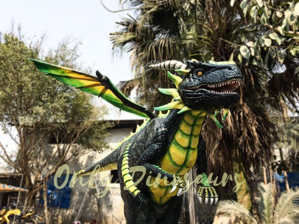 Professional Dragon Costume for TV Show5