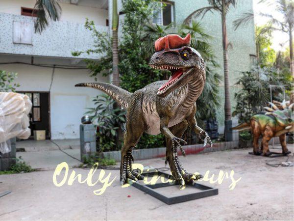 Realistic Animatronics Dilophosaurus for Dinosaur Park