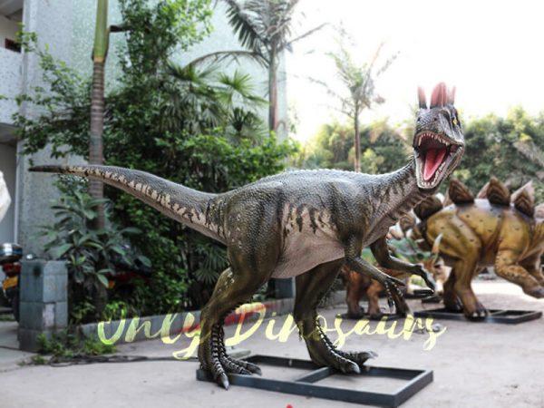 Realistic Animatronics Dilophosaurus for Dinosaur Park7
