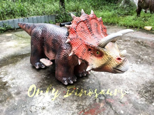 Realistic Dinosaur Rides Triceratops for sale2