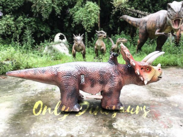 Realistic Dinosaur Rides Triceratops for sale5