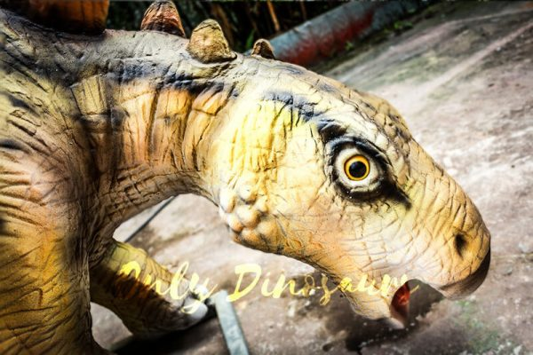 Realistic Juvenile Animatronic Dinosaur Stegosaurus6