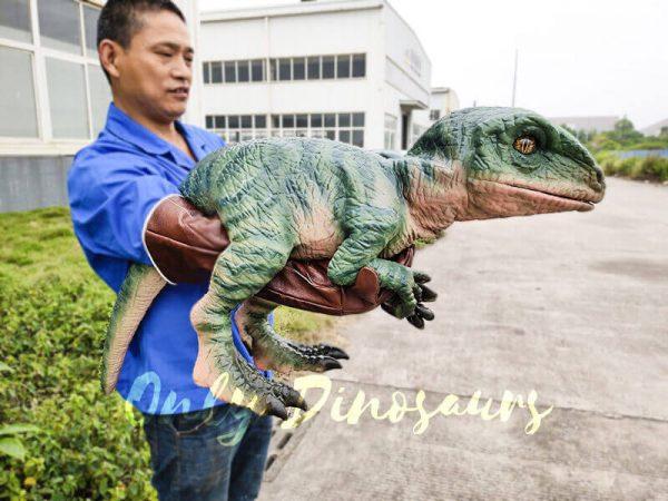 Realistic Raptor Glove Puppet for Jurassic Park1