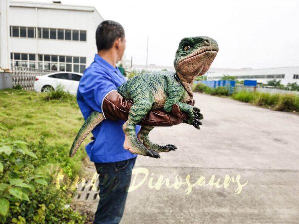 Realistic Raptor Glove Puppet for Jurassic Park2