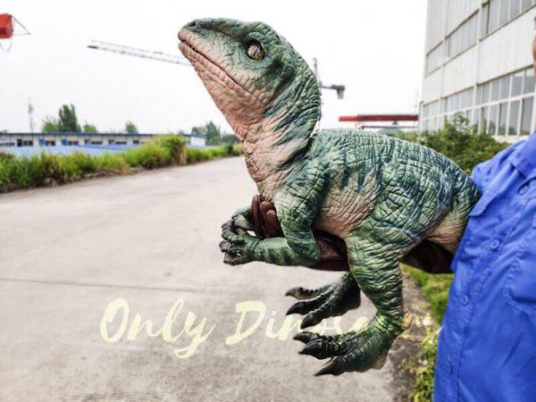 Realistic Raptor Glove Puppet for Jurassic Park4