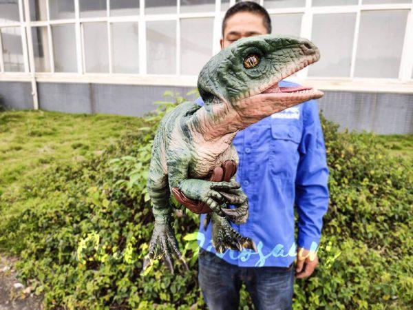 Realistic Raptor Glove Puppet for Jurassic Park6