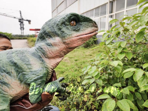 Realistic Raptor Glove Puppet for Jurassic Park7