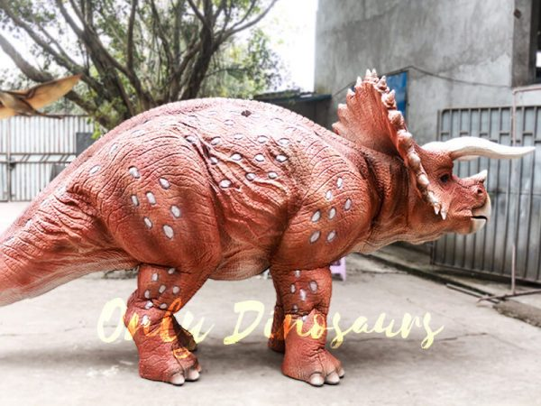 Red Triceratops 2 Person Costumes for School6