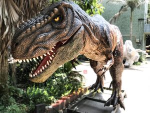 Scary Animatronic Tyrannsaurus rex for Jurassice Event