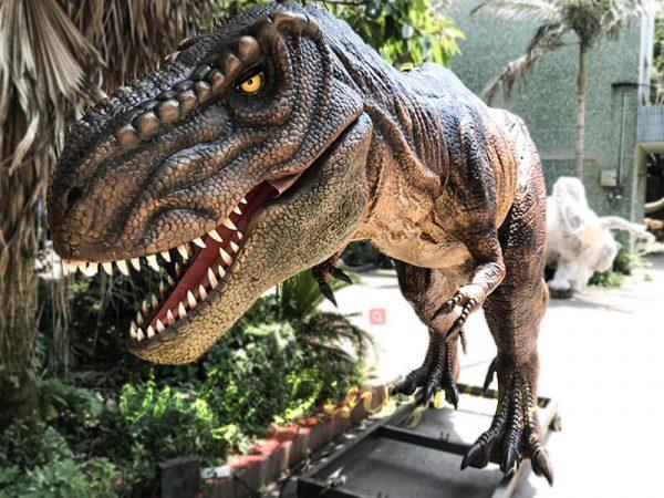 Scary Animatronic Tyrannsaurus rex for Jurassice Event1