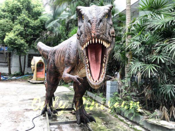 Scary Animatronic Tyrannsaurus rex for Jurassice Event5