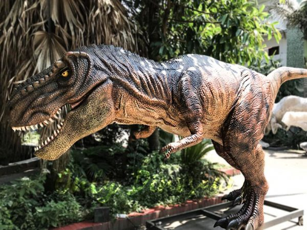 Scary Animatronic Tyrannsaurus rex for Jurassice Event6