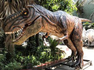Scary Animatronic Tyrannsaurus Rex for Jurassice Event