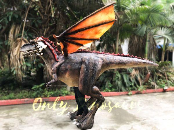 Shop-Center-Dragon-Costume-With-Spraying-Black2-1