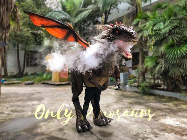 Shop-Center-Dragon-Costume-With-Spraying-Black3-1