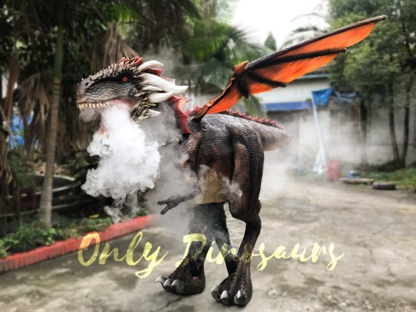 Shop-Center-Dragon-Costume-With-Spraying-Black4-1