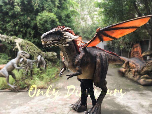 Shop-Center-Dragon-Costume-With-Spraying-Black5
