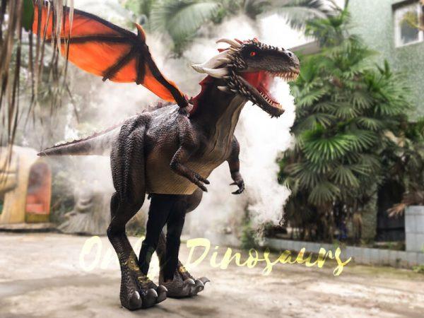 Shop-Center-Dragon-Costume-With-Spraying-Black6