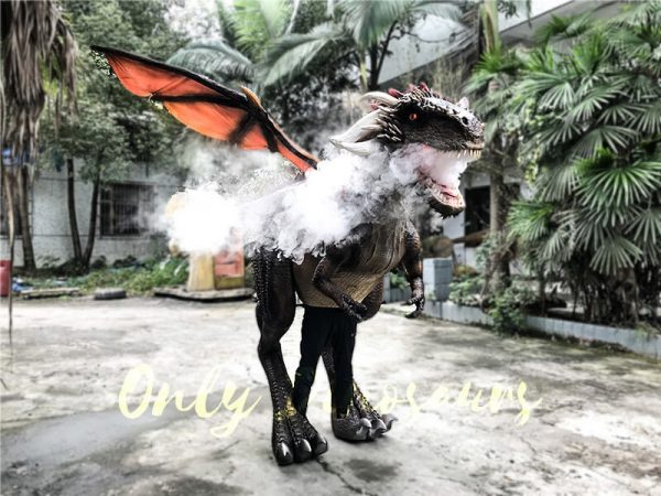 Shop Center Dragon Costume with Spraying Black1