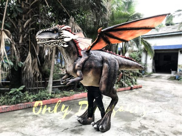 Shop Center Dragon Costume with Spraying Black2