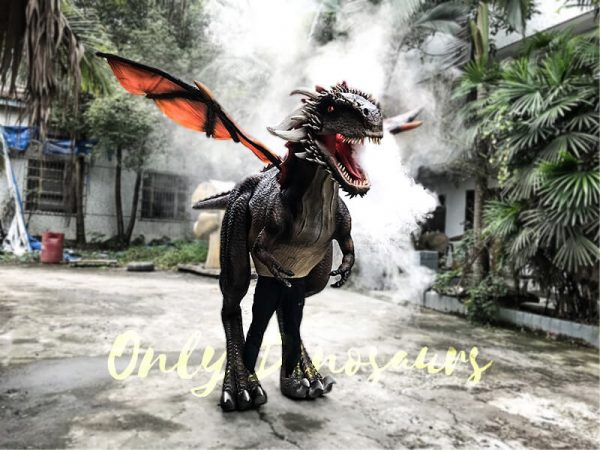 Shop Center Dragon Costume with Spraying Black3