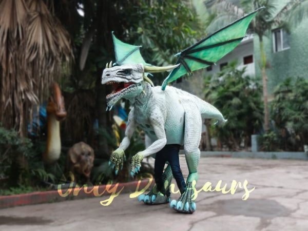 Special-White-Dragon-Costume-For-Rent-Business2-1
