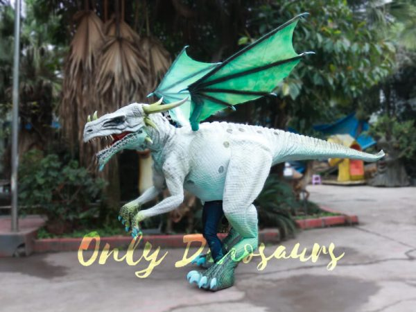 Special-White-Dragon-Costume-For-Rent-Business3-1