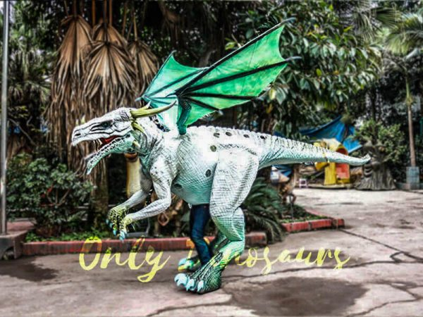 Special White Dragon Costume for Rent Business1