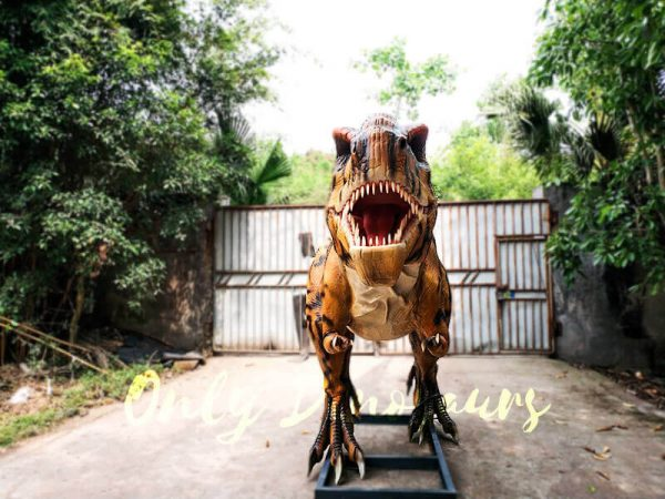 Stripe Jurassic Park T rex Animatronic Model3