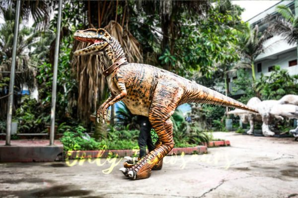 Stripe Realistic Dinosaur Suit for Park Attention6