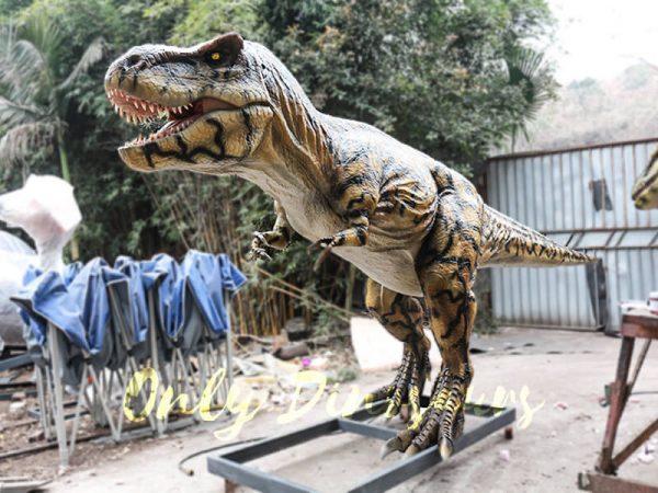 T Rex Animatronic Dinosaur Exhibit for sale1