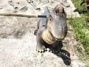 Theme Park Brachiosaurus Dinosaur you can Ride